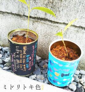 リメイク缶/ミドリトキ色