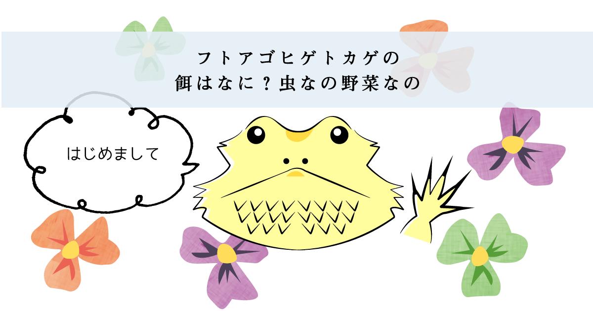 フトアゴヒゲトカゲの餌はなに?虫なの野菜なの?